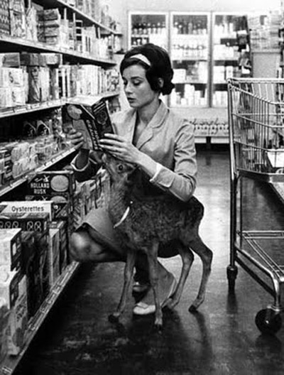 Audrey-Hepburn-and-her-pet-fawn-Pippin