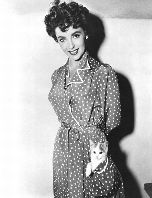 Elizabeth-Taylor-with-her-cat