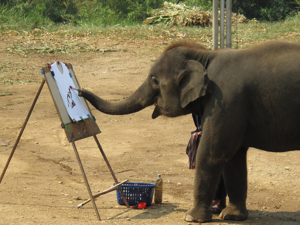 elephant-painting-rare-photos