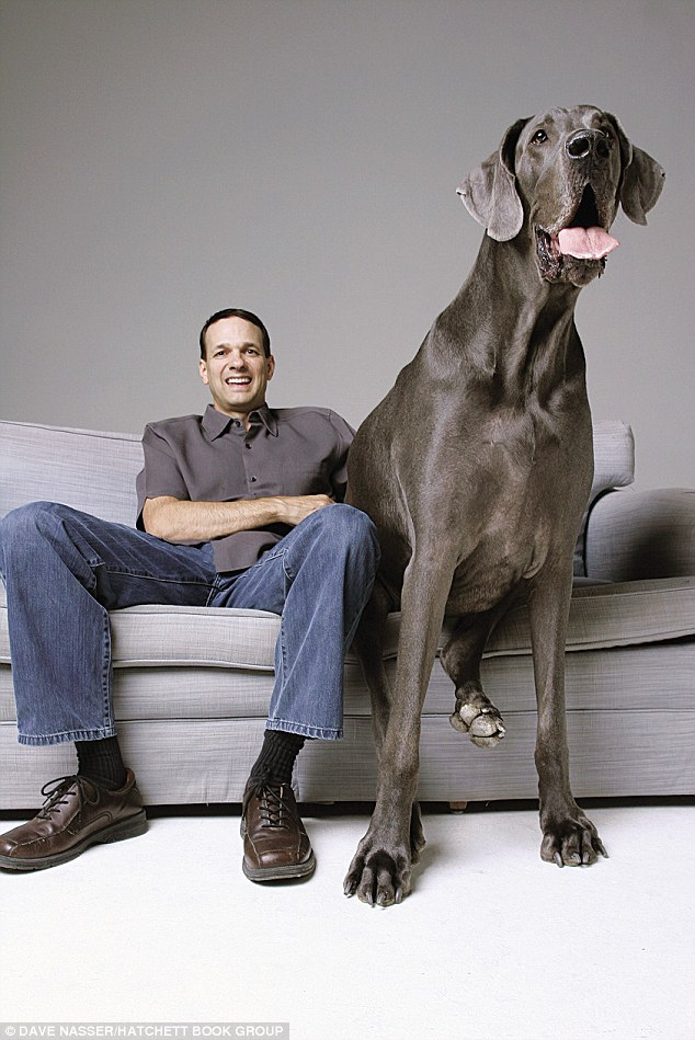 george-tallest-dog-guinness-world-records