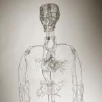 glass-made-blood-supply-human-body
