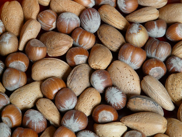 almond-nuts-after-removal-from-shell