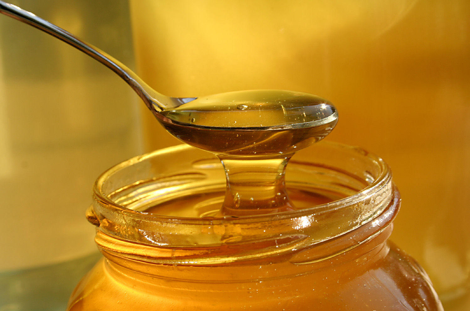 honey-brought-from-Europe-to-USA-as-substitute-to-sugar