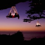 TREE CAMPING IN ELK , CALIFORNIA