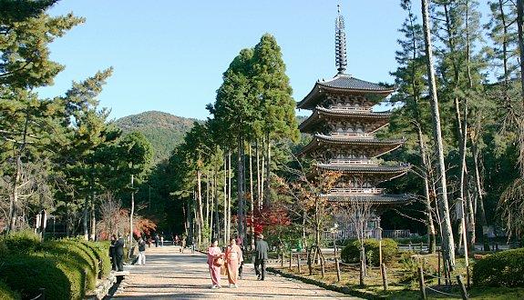 daigo-ji-temple-five-storied-pagoda-shimo-daigo-area