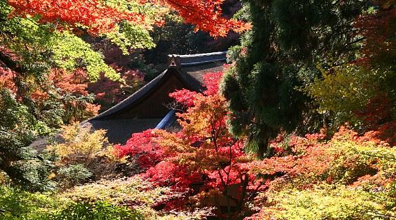 daigo-ji-temple-kami-daigo