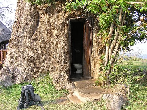 toilet-in-Baobab-tree