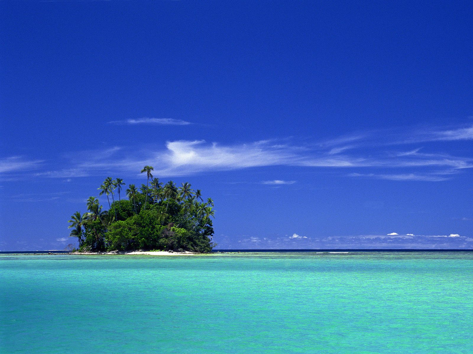 Coral-island-in-solomon-islands