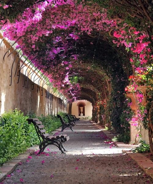 Garden-Passage-Valencia-Spain