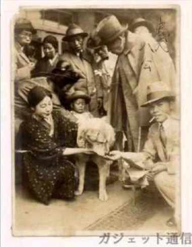 hachiko-fed-by-other-rail-passenger