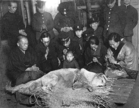 Hachiko-funeral-in-japan