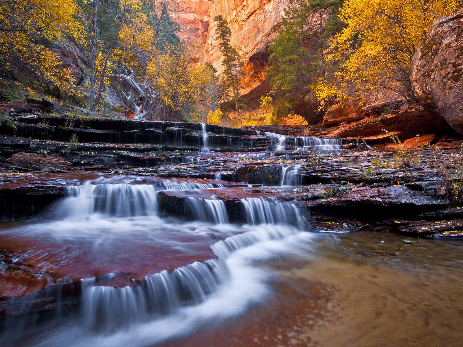 arch-angel-falls-in-zion-national-park
