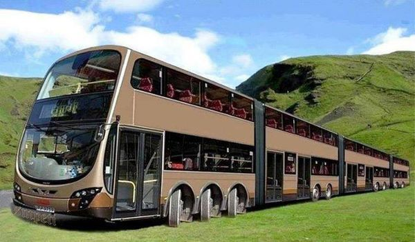 World's Largest Bus
