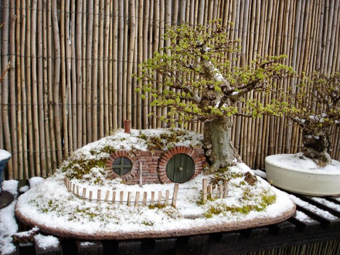 bonsai-tree-with-snow