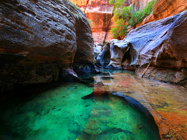 emerald-water-pool-in-zion-national-park