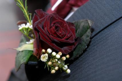 Black Rose - 67.9KB