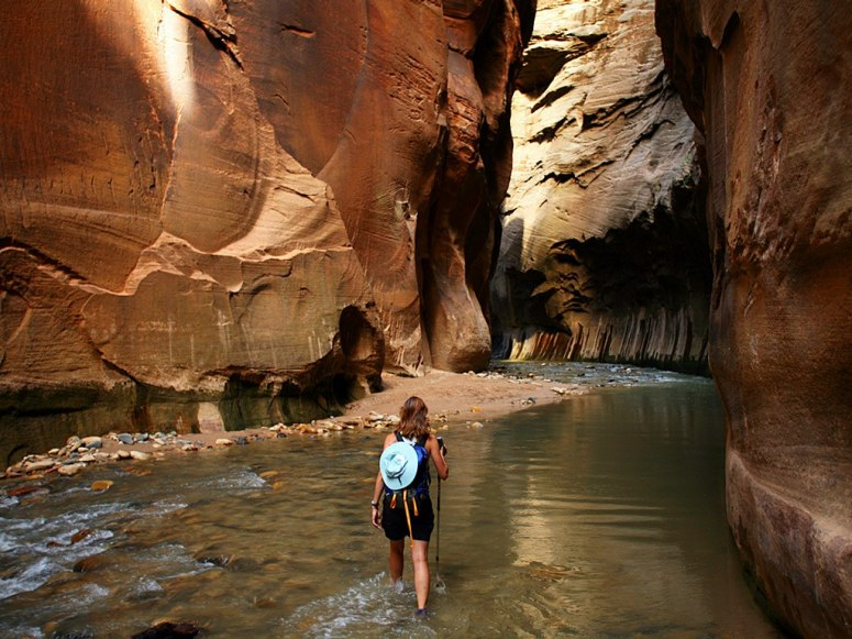 virgin-river-popular-attraction-in-zion-national-park