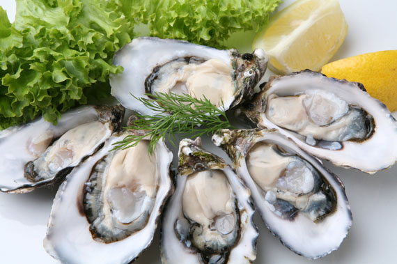 Oysters-delicacy