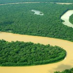The Amazon rainforest produces much of Earth's oxygen