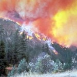 The forest fires move very quick to uphill than downhill