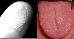 finger-print-toungue-print-unique