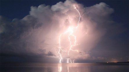 lightning-1-everglades-dhwicker_980x551