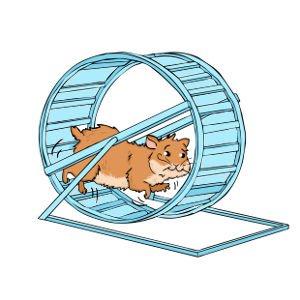 hamster_wheel_running-300x300